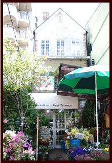 店舗案内 ミニ観葉植物 寄植え ローズガーデン