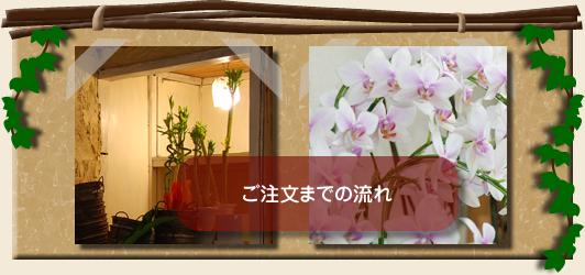 ご注文までの流れ ミニ観葉植物 寄植え ローズガーデン